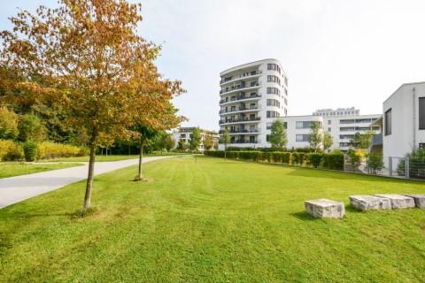 VCB: Twee derde van nieuwe woningen en flats nemen geen bijkomende ruimte in