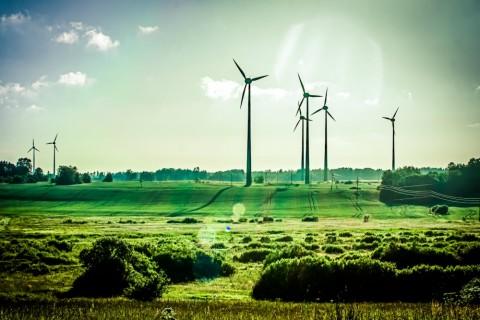 Tommelein wil naar 40 procent groene elektriciteit