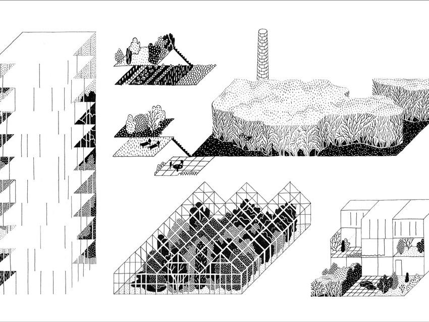 Architectuurorganisaties